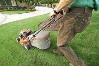 Правильный покос газонной травы правила и советы от студии ландшафтного дизайна Виденфлора